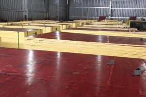 安徽建筑模板生产线视频