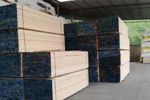 广西梧州做大做强木材加工产业