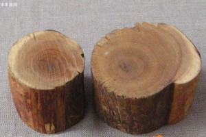 十种价值不菲的木材,来盘一盘