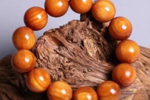 琥珀木的功效和作用,琥珀木对人的危害有多大