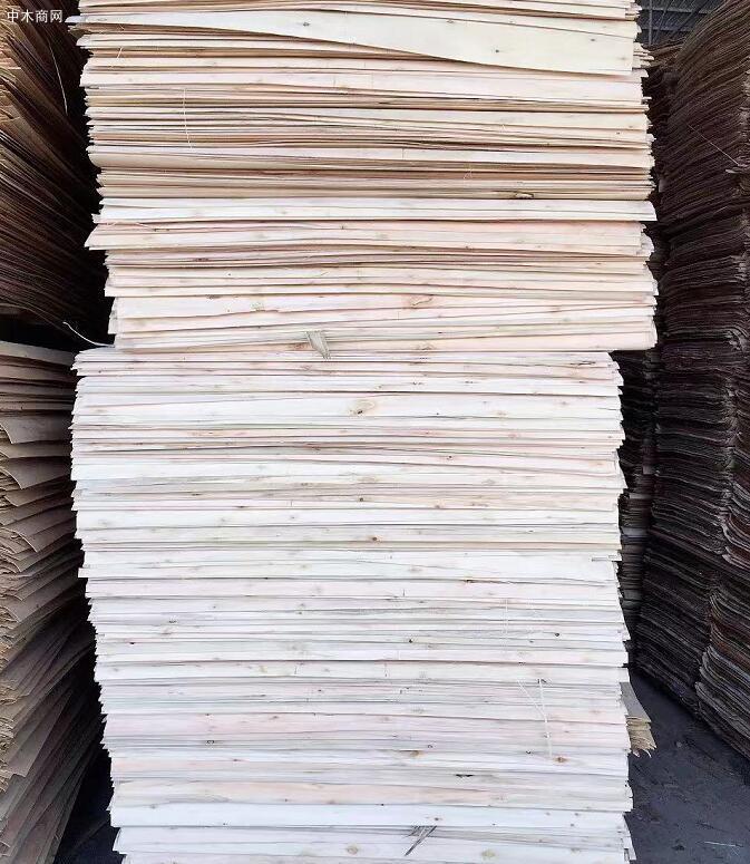 杨木单板又称为杨木木皮