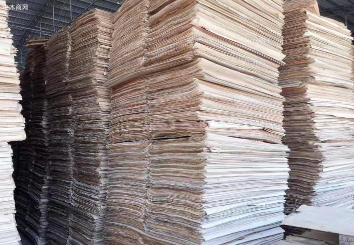 杨木单板也就是杨木皮
