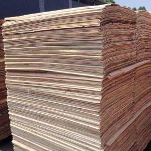 徐州杨木单板和杨木木皮十大品牌