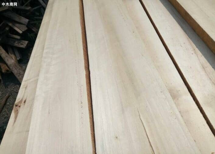 杨木板心边材区分明显