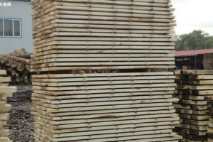 漯河杨木板材批发价格