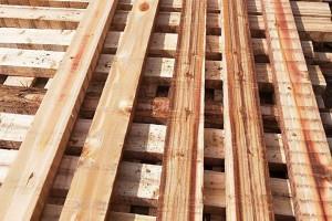 杉木建筑木方实物图片