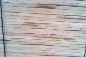 西南桦实木板材实物图片