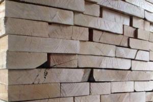 西南桦实木板材报价