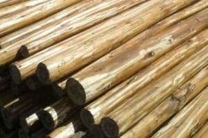杉木领条批发