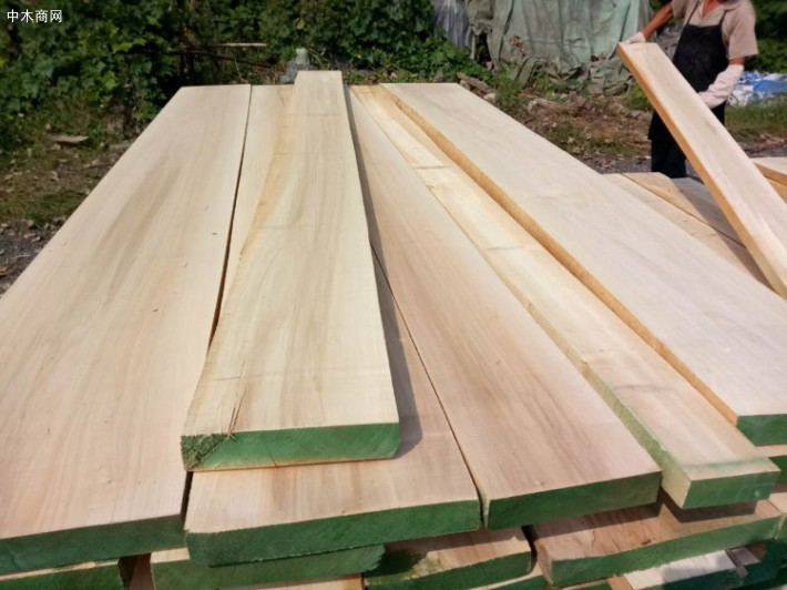 白杨木板材价格多少钱一立方米今日最新报价批发