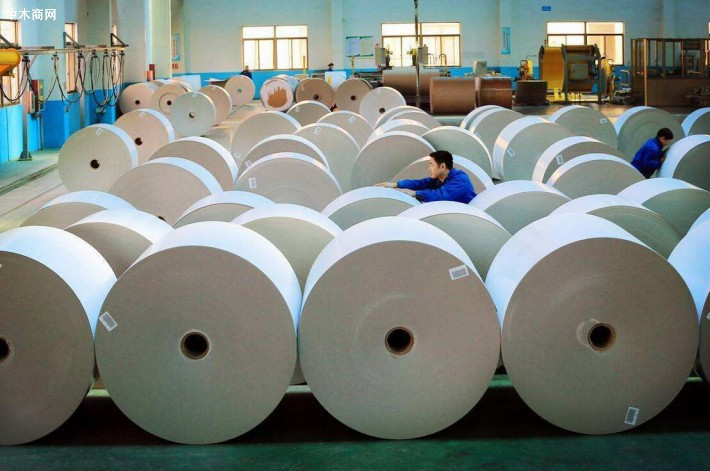 白杨木板材价格多少钱一立方米今日最新报价加工