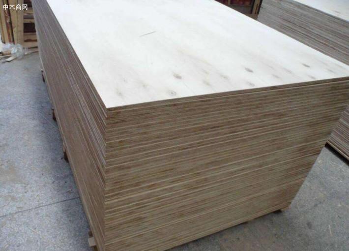 白杨木板材价格多少钱一立方米今日最新报价品牌