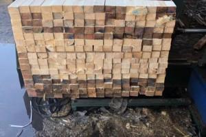 铁杉,黄松,云杉,花旗松,辐射松,白松,樟子松板方材厂家批发