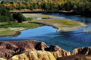新疆胡杨林全世界最美