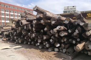 正宗老料老挝大红酸枝160吨现货视频