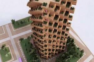 用木材打造可持续发展的未来