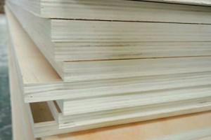 杨木多层板3-18厘
