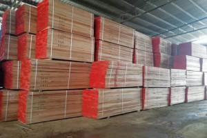 广西政府加大木材加工企业补贴