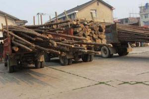 咸安森林公安盘查车辆扣押非法运输木材40余吨