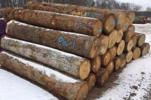 美國黑胡桃刨切材原木厂家直销