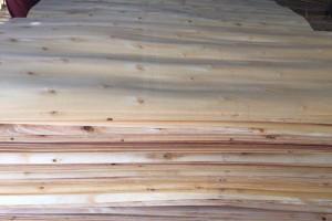 什么是杨木皮?杨木皮的优缺点以及等级划分?