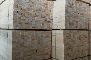 未来我国木材进口的形式分析