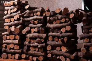 玩木头的,这篇文章值得收藏