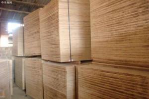 江苏邳州胶合板年生产能力2000万方
