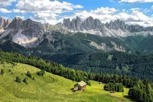 意大利森林面积十年增长5% 资源利用率木材最高