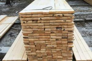 武汉海关从进口板材首次截获有害生物云杉树蜂