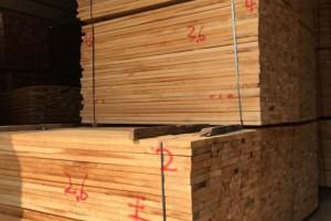 白椿木烘干板材价格
