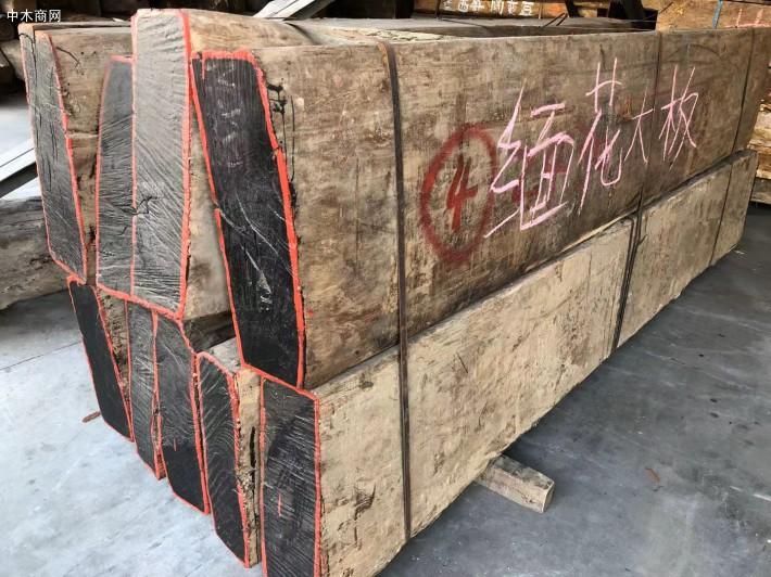 缅甸花梨大果紫檀价格多少一吨批发