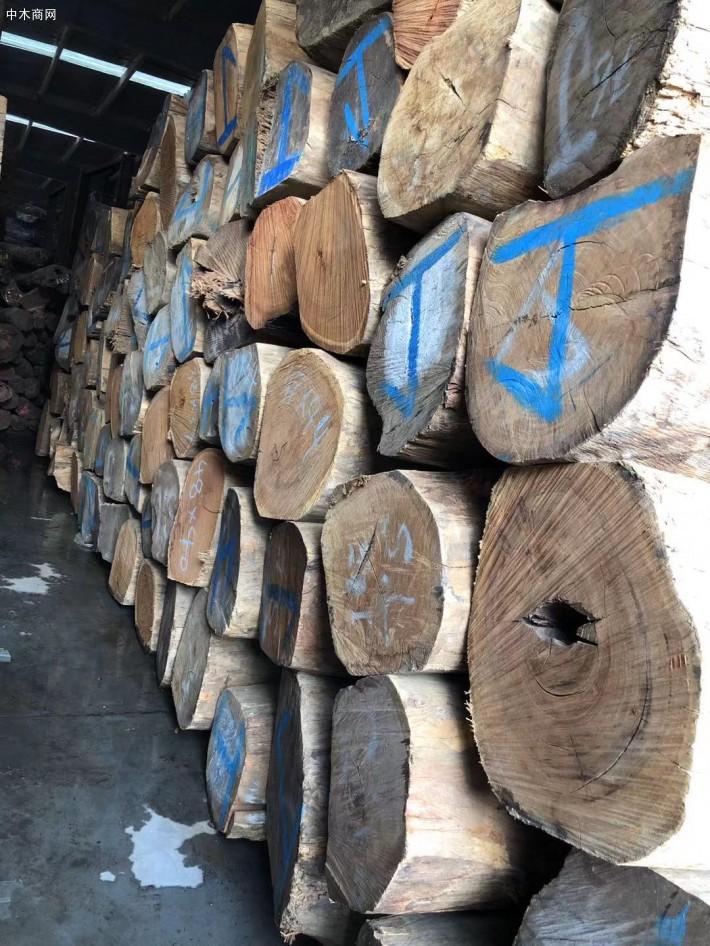 缅甸花梨大果紫檀价格多少一吨供应