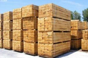 1至9月贵港木材加工产值达300亿元