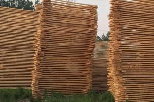 尴尬!木材加工厂面临既开不起工也不敢停工的局面?