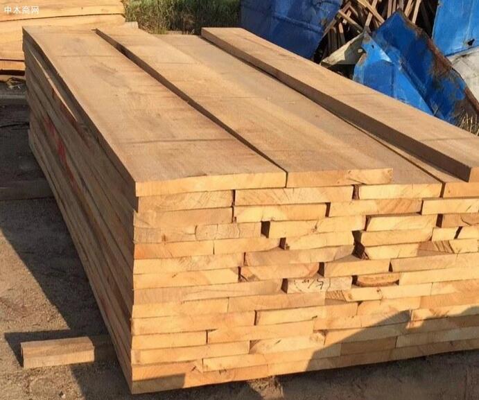 河南白杨木板材今日最新报价图片