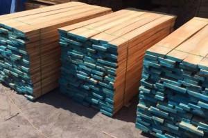 白杨木板材价格与白杨木烘