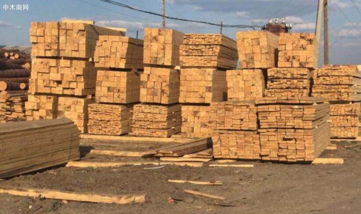 求购:樟子松板材