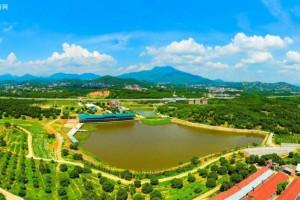 四川广安生态木业产业园高质量发展