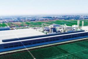 徐州博枫木业胶合板项目环评获批通过