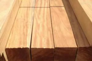 南非10月份木材和木材产品增长了4%