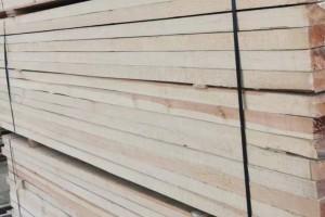 驻桂全国人大代表对广西贵港木业产业进行集中视察