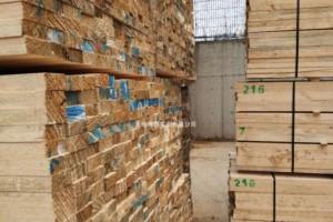 广西定桃村村集体木材加工厂项目顺利开工建设