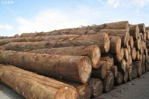 二连浩特进口木材口岸出入境中欧班列首次突破1500列