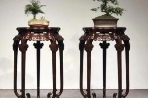为什么老挝大红酸枝成了如今最受欢迎的木材,而不是海南黄花梨?