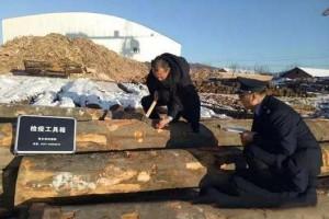 阿里河林业局森防站加强进口木材检疫工作