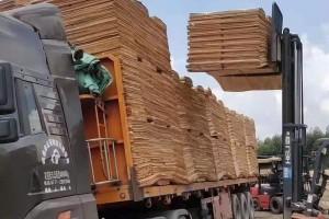 广西精品桉木板皮子实物装车视频