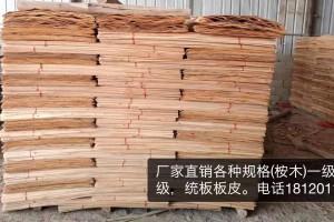 广西桉木板皮子生产厂家加工视频