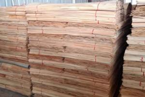 广西桉木板皮子厂家批发价格