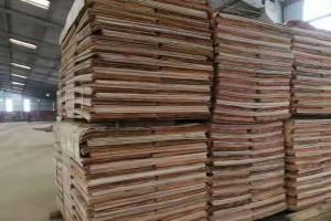 广西桉木板皮子高清实物图片欣赏